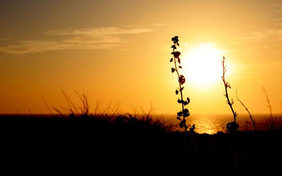 Puestas de Sol en Menorca