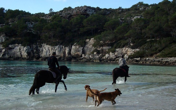 paseos en caballo en Menorca